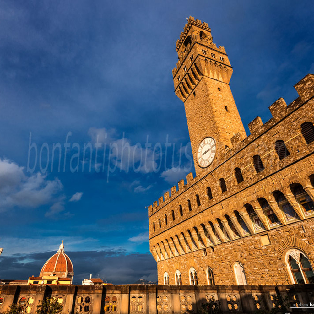 Photographic Archive Museums And Churches Of Florence Italy